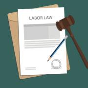 Employment Law Paperwork