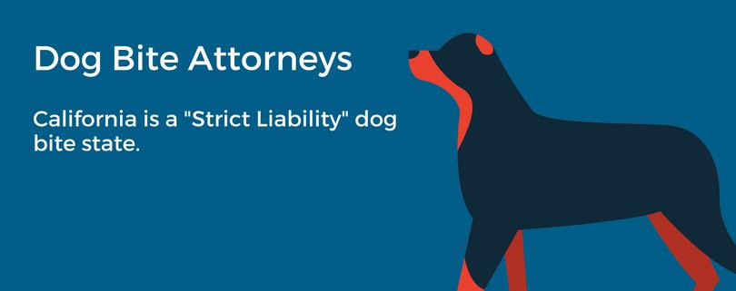 California Liability On Dog Bite